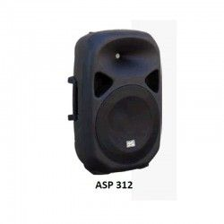 Audio Music passive ASP Box 312 300w